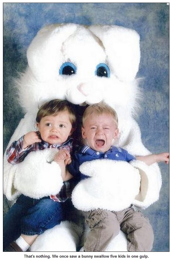 Bunny27