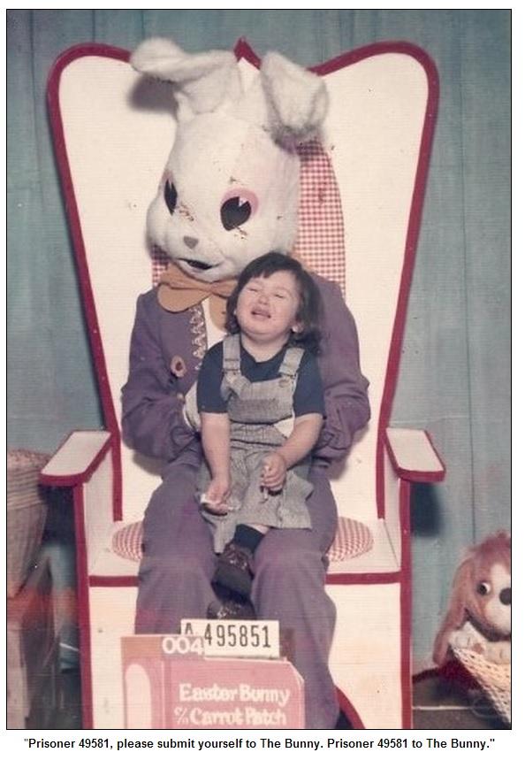 Bunny31