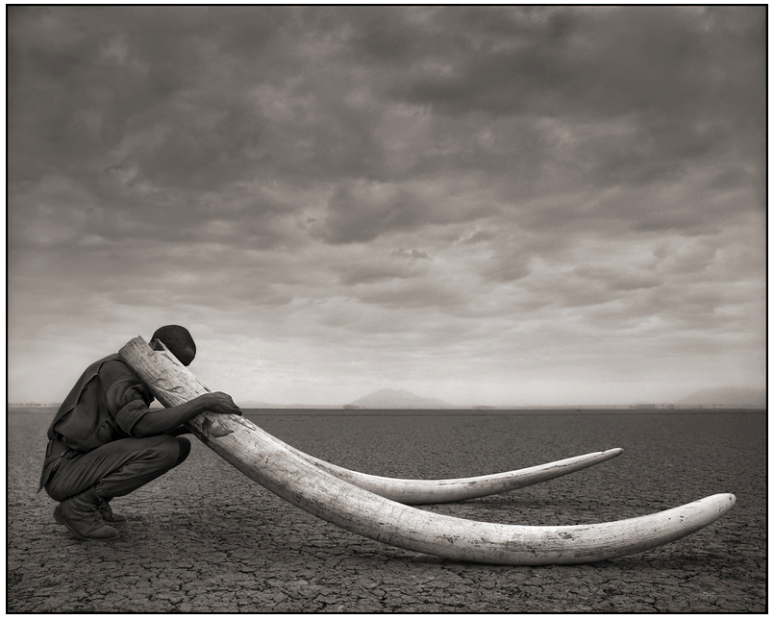 ©nick brandt, Ranger with tusks of killed elephant, amboseli, 2011