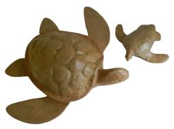 biodegradable turtel urn