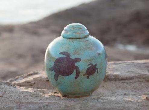 green turtle urn
